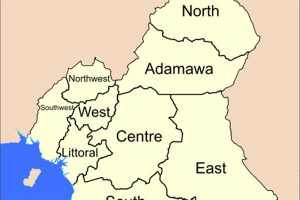 THE INTERNATIONAL COMMUNITY'S MASTER PLAN TO INTERVENE IN BRITISH CAMEROON REVEALED by Prince Akame