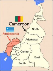 IS THE CAMEROON GOVERNMENT USING CHEMICAL WEAPONS ON ITS PEOPLE?