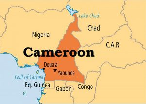 Cameroon's External Relations Minister Reacts to the UN Security Council published by Dave WANTANGWA