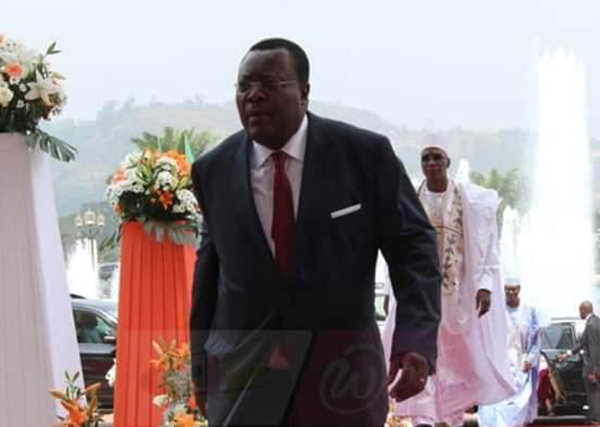 The Cameroons: Again the Pitiable Insanity of Government Surrogates