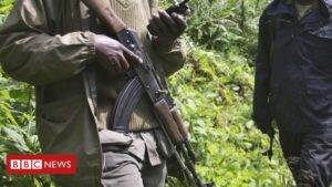 DR Congo's Virunga National Park hit by 'deadliest' attack