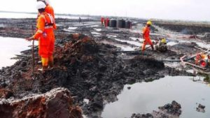 Coalition Urges President Buhari To Complete Ogoni Clean-up Exercise, Promote Development In Niger Delta