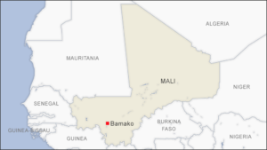 30 Militants Killed in Raid, Malian Army Says | Voice of America