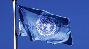 Remote Volunteers Help NGOs Engage with the United Nations – The Advocates Post
