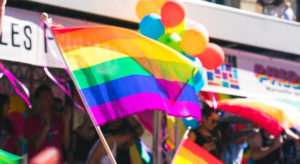 US Supreme Court ruling 'extremely positive' for LGBT community, says UN Rights Expert |