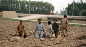 Coronavirus casts 'huge shadow' over Afghan life as multi-dimensional crisis continues |