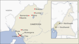 Rights Groups Condemn Attack on Aid Workers in Cameroon | Voice of America