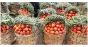 Cameroon: Tomato farmers commit suicide as  market prices plummet