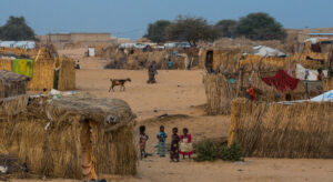 Niger: UN gravely concerned for safety of refugees, following Boko Haram attack |