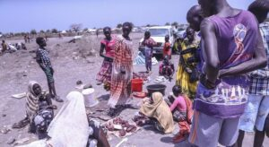 Keep focus on South Sudan, UN mission chief tells Security Council |