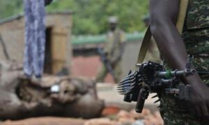 CAR: 117 soldiers flee to Cameroon