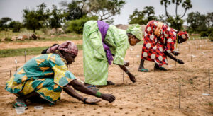 Secretary-General underscores need for peace and stability in Africa's Sahel region |