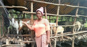 FROM THE FIELD: The goats helping Zambians to reach economic independence |