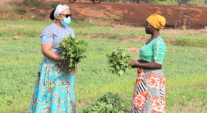 FROM THE FIELD: Adapting to survive and thrive in Ghana |