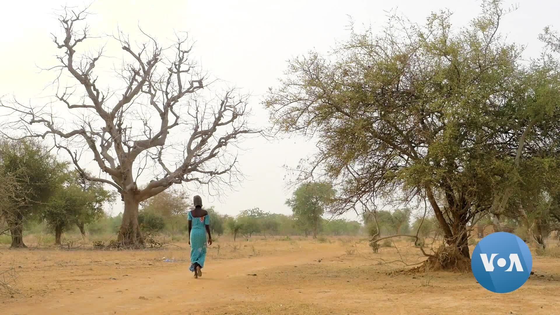 Sahel Child Marriage is Growing Rapidly   Voice of America