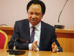 Learn From MKO Abiola's Travails Not To Trust Northerners, Shehu Sani Warns Tinubu
