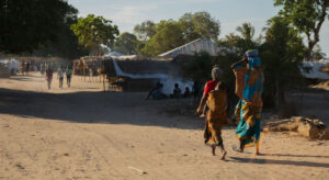 Thousands on the move after brutal attacks in northern Mozambique, UN office reports |
