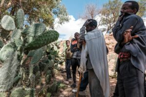 UN Security Council to Meet on Tigray | Voice of America