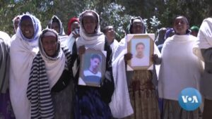 Read more about the article US Warns Ethiopia and Eritrea to Reverse Course in Tigray | Voice of America
