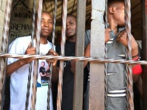 Read more about the article DR Congo: Free Youth Activists