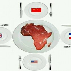 Africa-a-Meal-for-Westerners.jpg